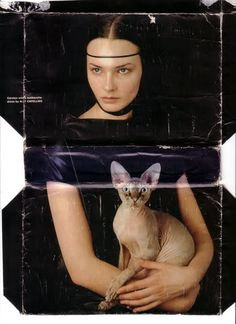 Michael Sanders, Lady With An Ermine