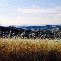 Around Viticcio
