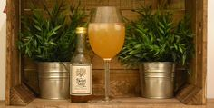 12 Days of Sweet Sally TeaCocktails �Day5   Sweet Sally Punch   Check out the recipe on the Sweet Sally Tea blog.  #teapunch #teacocktails #rum #southernicedtea