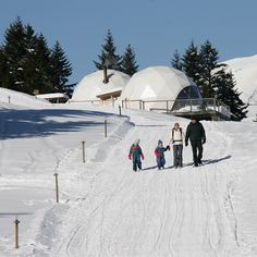 Pods-Dates-Rates   Whitepod Eco-Luxury Hotel ❄ Valais - Switzerland Switzerland Travel Guide, Switzerland Hotels, Travel With Kids, Family Travel, Packing List For Travel, Family Adventure, Alps, Beautiful Landscapes, Traveling By Yourself