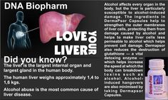 Body Organs, Dna, Herbalism, Alcohol, How To Make, Products, Herbal Medicine, Rubbing Alcohol, Liquor