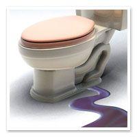 Trusted Saskatoon Blog | Perfection Plumbing a Trusted Saskatoon Plumber shares a tip on how to fix your toilet