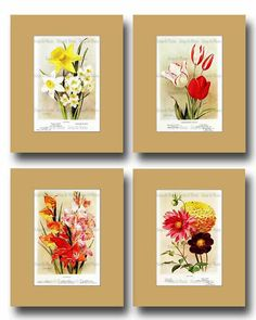 Victorian Flower Illustration  Antique by VintageArtMasters