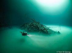"""Cenote Angelita"" by Tom St George https://gurushots.com/tom.st.george/photos?tc=2f714573798c4445d3810149174a9e47"