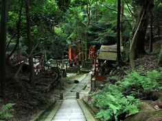 伏見稲荷大社 (Fushimi Inari Shrine) in 京都市, 京都府