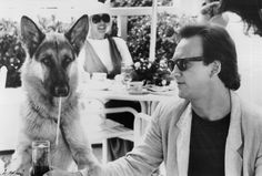 german shepherd jerry lee from the film with james belushi beautiful dog great film! Silver German Shepherd, German Shepherds, German Sheperd Dogs, Shepherd Dogs, Animal Tv, Image Film, Gsd Dog, Vintage Dog, Service Dogs