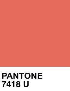 PANTONE SOLID UNCOATED : Photo