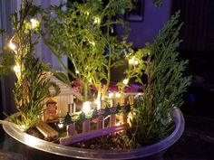 Miniature Garden Christmas Decors — Steemit Miniature Gardens, Fairy Gardens, Bamboo House, Hens And Chicks, Christmas Decorations, Table Decorations, Miniature Figurines, Holiday Lights, Solar Lights