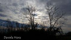 Lomellina-Pavia