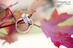 Wonderful engagement/wedding ring photo idea for an autumn wedding. Photo: Shannon Lee Images