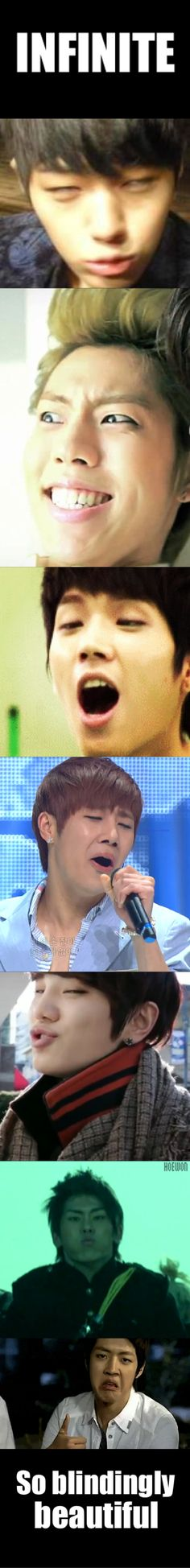 So blindingly beautiful! Haha. Even when they make derp faces, I still love them.