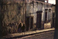 brothrustharder:   Elliott Erwitt MEXICO. San Miguel de Allende. 1957.
