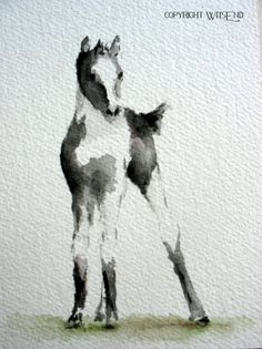 'SOCKS'.  Foal Horse painting original equine watercolor animal art by 4WitsEnd, via Etsy