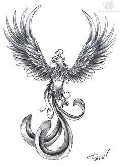 Pin Small Bird Tattoos Chinese Phoenix on Pinterest