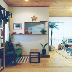 shihoさんの、Lounge,観葉植物,無印良品,ソファ,DIY,一人暮らし,カリモク60,賃貸,コウモリラン,男前,ヘザーブラウン,フェニックスロベレニーについての部屋写真
