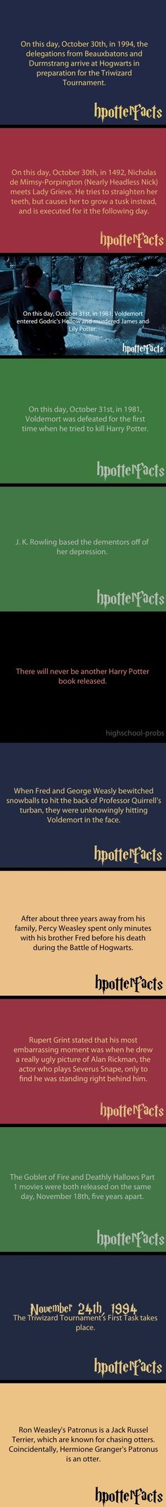 Harry Potter Facts // funny pictures - funny photos - funny images - funny pics - funny quotes - #lol #humor #funnypictures