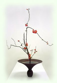 beautiful -  love the simplicity and organic shape. (Ikebana)