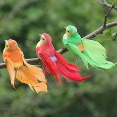 Nature Animals, Animals And Pets, Cute Animals, Desert Animals, Wildlife Nature, Cute Birds, Pretty Birds, Exotic Birds, Colorful Birds
