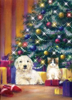 Tony Hinchliffe - puppy and kittern under christmas tree.jpg