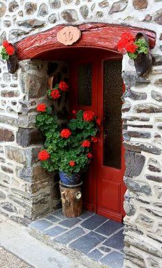 red door with flower pots