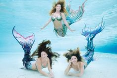 11 great day trips from Orlando, Florida. Whether you're passing through the state of Florida or need a break from all the amusement parks in Orlando, you can find great day trip ideas. Siren Mermaid, Mermaid Cove, Mermaid Diy, Mermaid Photo Shoot, Mermaid Pictures, Real Mermaids, Mermaids And Mermen, Weeki Wachee Mermaids, Realistic Mermaid Tails