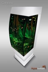 aquarium colonne dangle design bermudes aquariums sign s aquaniman pinterest d aquarium. Black Bedroom Furniture Sets. Home Design Ideas