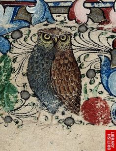 Detail of an owl from a floral border, at the beginning of Matins of the Virgin.   Origin:England, S. E. ( London)