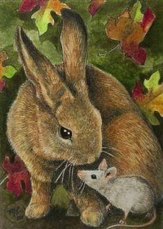 Bunny Rabbit & Friend