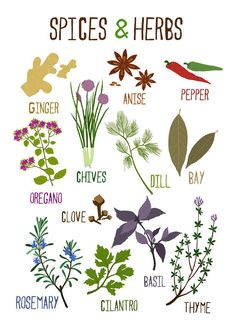 A Collection Of Labels For Your Kitchen Herbs By Shy