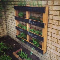 Herbs Gardening DIY Pallet Vertical Herb Garden: Hanging Planter - We have reclaimed DIY pallet vertical herb garden by using some rustic pallet skids lying in our backyard for nothing. This came up with as a very thrifty and Hanging Herb Gardens, Vertical Herb Gardens, Hanging Herbs, Hanging Planters Outdoor, Diy Hanging, Indoor Vegetable Gardening, Organic Gardening, Herb Gardening, Gardening Blogs
