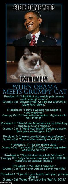 politics When Obama meets Grumpy Cat