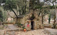 """17 trees growing on the roof of a church! * St: Theodora Church - Village """"Bata"""" in Arcadia - Greece Arcadia Greece, My Father's House, Fire Signs, Growing Tree, Place Of Worship, Oak Tree, Abandoned Buildings, Kirchen, Most Beautiful Pictures"""