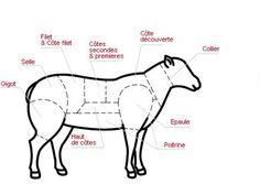 Comment découper le mouton, 2ème journée de fête Food In French, Learn French, Food And Drink, Animals, Gilles, Lamb, Routine, Rest, Shops