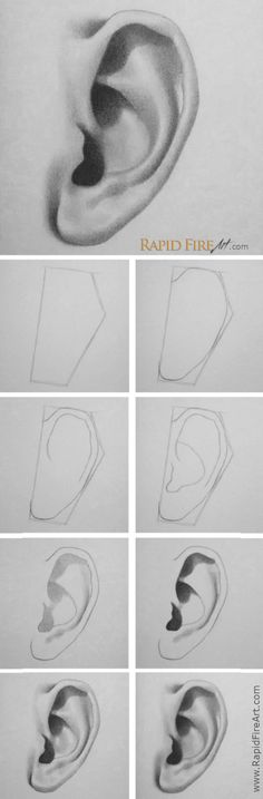 to draw an ear – 5 easy steps -How to draw an ear – 5 easy steps - Amazing eye drawing by Rene Lopez ( How to draw - human Cool Art Drawings, Pencil Art Drawings, Art Drawings Sketches, Realistic Drawings, Easy Drawings, Drawing Skills, Drawing Lessons, Drawing Tips, Drawing Ideas