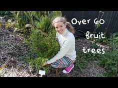▶ Over 60 Fruit Trees on 1/8 Acre: A Tropical Permaculture Food Forest Orchard - YouTube