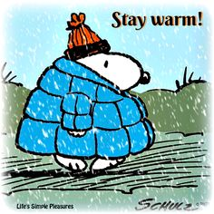 Awww I ❤️snoopy Snoopy Love, Snoopy And Woodstock, Peanuts Cartoon, Peanuts Snoopy, Peanuts Christmas, Winter Christmas, Christmas Sayings, Christmas Cards, Peanuts Characters