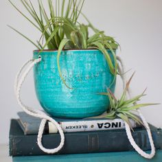Turquoise Hanging Planter -- you can never have too many plants!