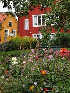 El amor los colores. Finlandia