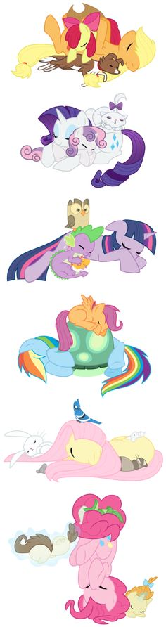 Napping ponies and their pets and siblings, so cute.