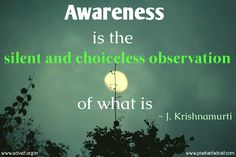 """""""Awareness is the silent and choiceless observation of what is."""" ~ Jiddu Krishnamurti"""