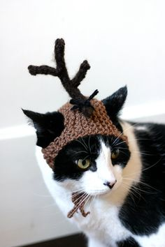 Max the Dog Grinch Cat Hat Christmas Dr Seuss Costume. $18.00, via Etsy.