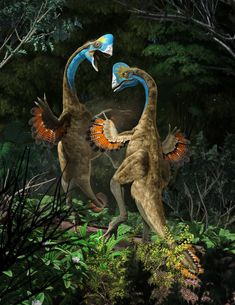 New Stars in the Dinosaur World, PM Magazin April 2015. Anzu wileiyi, males fighting. Art by Román García Mora.