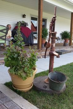 Old water pump with tin cup and bucket.