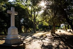 Local History, A 17, Cemetery, Paths, Restoration, Santa, Tours
