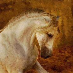 Oilpainting from your photo. Portrait of a horse by Patrycja Lewicka
