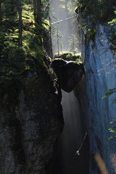 [3456x5184] A hanging heart regrows. Jasper, Canada