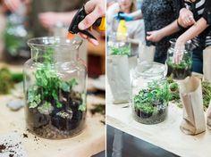 DIY las w słoiku Design Your Life, Succulent Terrarium, Planting Succulents, Bonsai, Picnic, Diy, Glass, Garden, Flowers