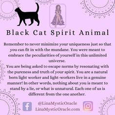 Cat Spirit Animal, Curious Facts, In Other Words, Spiritual Meaning, Animal Totems, Spirit Guides, Meant To Be, Spirituality, Black Cats