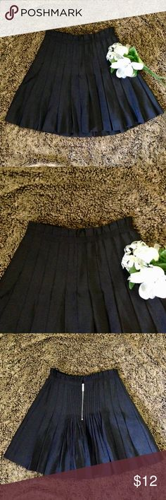 ZAC POSEN High Waisted Pleated Skirt Zac Posen for Target. Black. Rests high on waist. Thick and heavy w/ a silky feeling lining. 100% polyester. Pleats gathered in back. About 17.5 in. long. Worn twice. Excellent condition. Zac Posen for Target Skirts