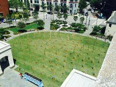 Aerial view of the lawn in front of the Gaillard Center (Source: Live 5)